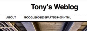 Blog Header w/Google Verification Page